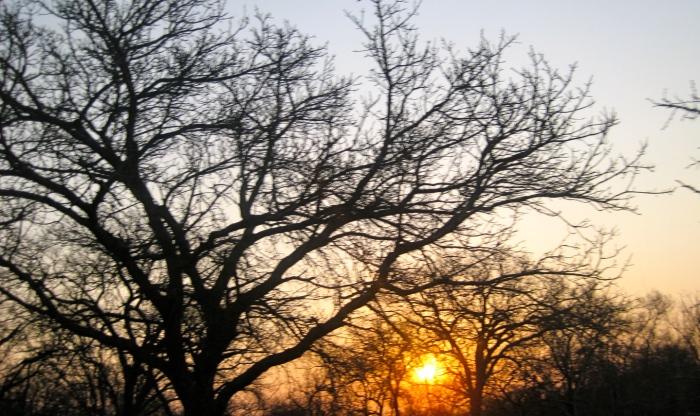 201212 sunrise2